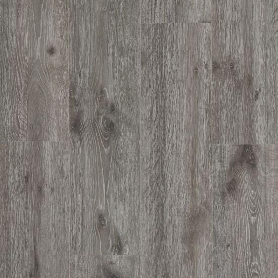 Anegada Oak